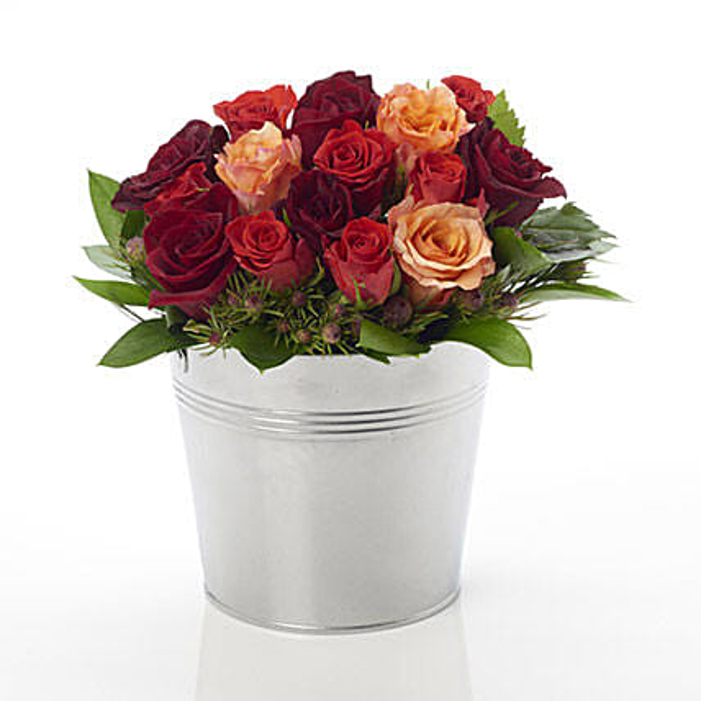 A Rosy Bucket