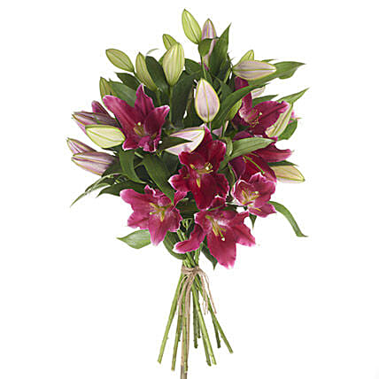 Gleaming Pink Lilies