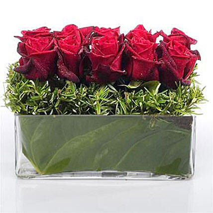 Heaven of Red Roses