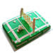 Smashing Badminton Court Cake 4Kg Chocolate