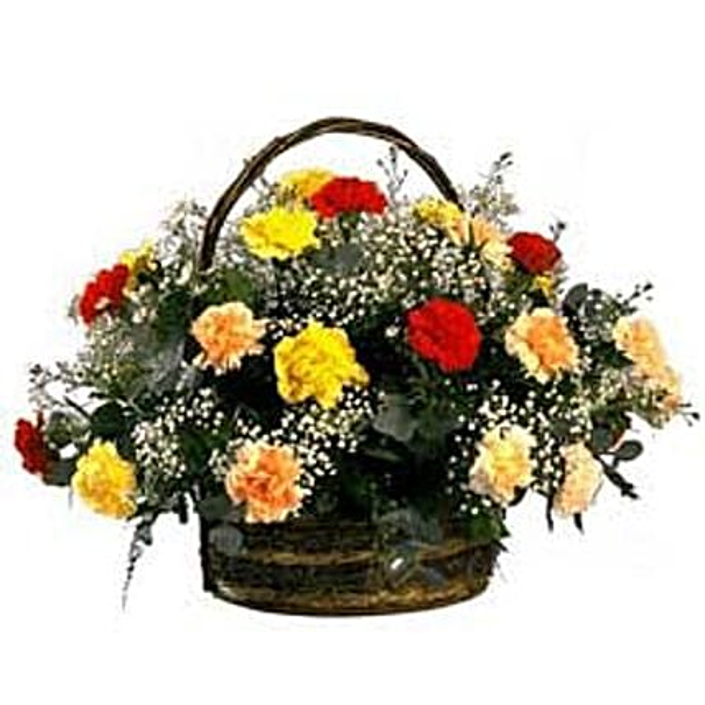 Rainbow Carnation Basket SA
