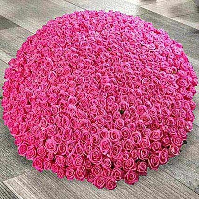500 Dark Pink Roses Arrangement