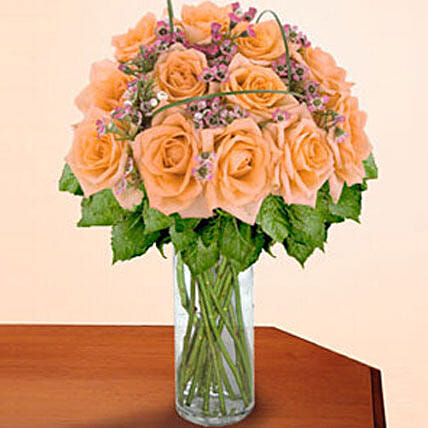 12 Long Stem Peach Roses