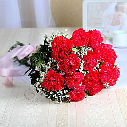 15 Red Carnations